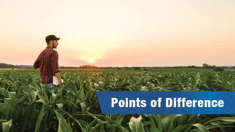 Farmer standing in a field of corn.